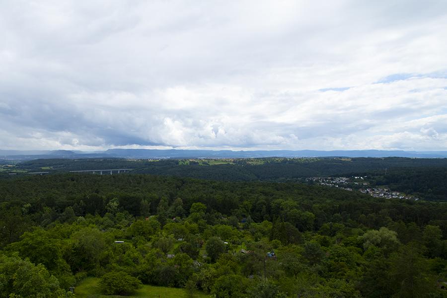 Ausblick vom Uhlbergturm