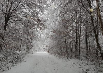 Uhlbergturm Winter 04